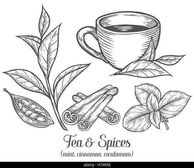 Cup Of Tea Vector Black Silhouettes Stock Photos