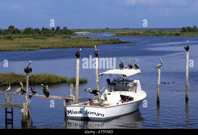 Beach Florida Myers Shrimp Images Boats Fort