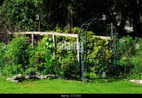 Grape Trellis Stock Photos & Grape Trellis Stock Images ...
