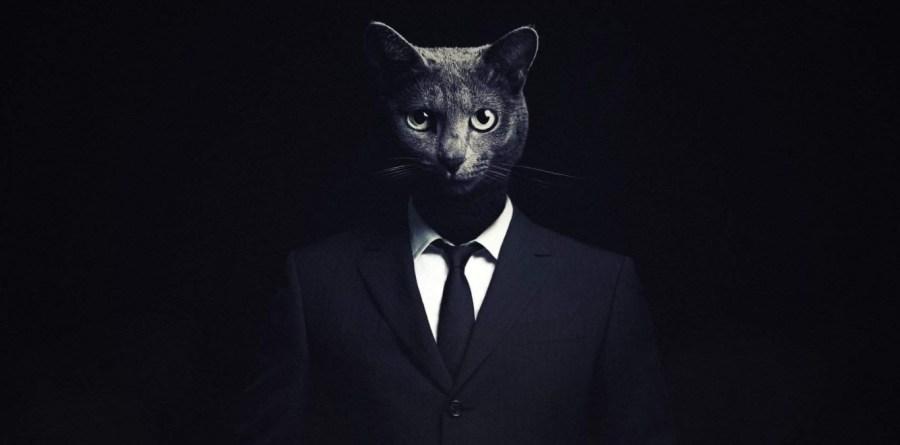 Кошачьи паразиты делают из людей лучших бизнесменов