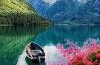 алкоголь и зависимость