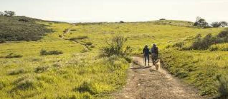 Удобный дизайн комнаты для школьника