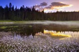 сайт найди работу вакансии
