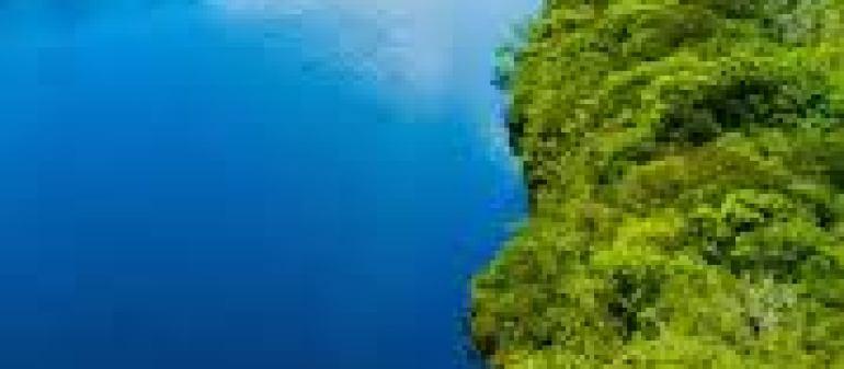 зеркало для прихожей как выбрать