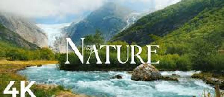 Десятка самых креативных бассейнов мира