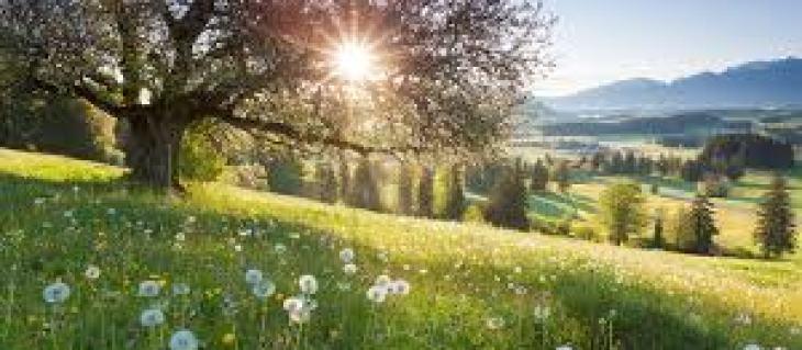 зачем пить много воды