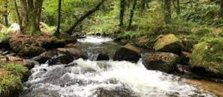 Как правильно хранить мёд, чтобы он долгое время радовал своим чудесным вкусом и целебными свойствами?