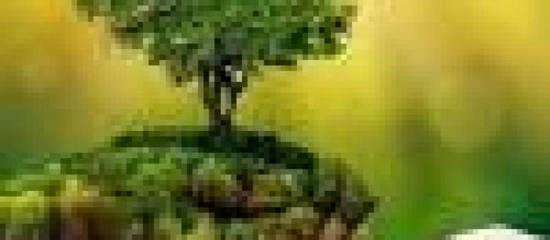 как тренировать внимание, как тренировать память и внимание