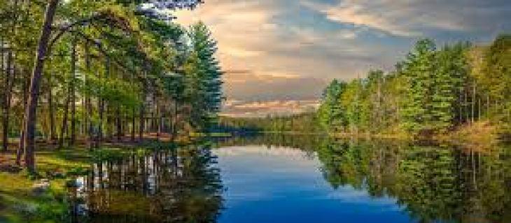 Как обновить квартиру без ремонта: 5 советов