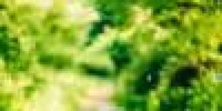 гром и молния их происхождение, гром и молния происхождение, гром и молнии происхождение