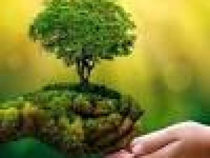 Милые домашние питомцы приносят в нашу жизнь море радости. Тем не менее, жизнь кошек наполнена опасностью, а истории их существования может позавидовать самая старая египетская статуя. Итак – 10 интересных фактов о кошках. 1.Кошки способны самостоятельно преодолевать большие расстояния, чтобы вернуться к себе домой. Так один кот, владелец которого переехал в другой штат и забыл взять своего питомца с собой, преодолел около четырех тысяч километров и нашел своего забывчивого хозяина. 2.Мнение об исключительной чистоплотности кошек немного преувеличено. Частое умывание преследует не только гигиенические цели. Кошка, оказывается, таким образом слизывает со своей шерсти витамин В, который крайне необходим животному для поддержания психической стабильности. Если не давать кошке такой возможности, она может заболеть или даже умереть от стресса. 3.Хуже всего приходится кошкам во Вьетнаме и, как ни удивительно, в Америке. Во Вьетнаме кошачье мясо всегда высоко ценилось в качестве изысканного деликатеса. А в Америке в 80-х годах появились слухи, что именно кошки являются разносчиками СПИДа, и американцы, несмотря на все доводы и уговоры ученых, убивали их в большом количестве. 4.В Австрии котам, занятым полезной деятельностью, полагается пенсия. Например, если кот охраняет зерновой склад от вредителей. Но, к сожалению, выдается пенсионное пособие не денежными знаками, а продуктовым пайком. 5.В городе Екатеринбурге обнаружен кот, который вместо того, чтобы выполнять свои кошачьи обязанности и охотиться на мышей, поступил с точностью наоборот. Когда хозяйка, обнаружив в доме мышей, позвала на помощь кота, он пожалел четырех мышат, согрел их под своей шерстью и заботился о них. 6.Кошки внесли свой вклад в развитие науки. Одна из них, например, опрокинула колбы, когда французский химик Бернар Куртуа сел обедать за рабочим столом вместе со своим домашним любимцем. В результате непредсказуемого смешения жидкостей получился йод. 7.Во время инквизиции кошек считали помощниками дьяво