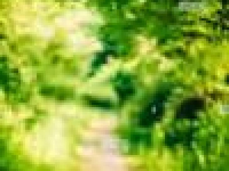 Hyannis Port: США