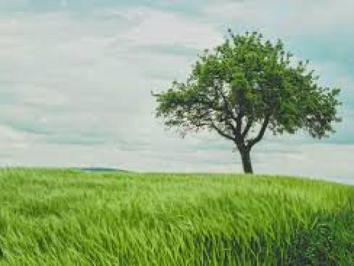 как влюбить в себя парня по переписке