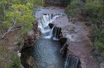 египетский чай, египетский красный чай