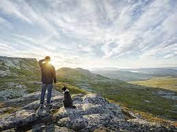 факты о напитках