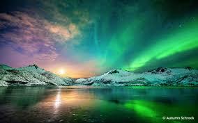 необычные сады мира, самые, фото