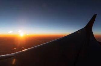 что содержат молочные продукты, молоко, йогурт, кефир, сыр