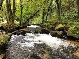 детское автомобильное кресло, выбрать, ремни, безопасность, автокресло