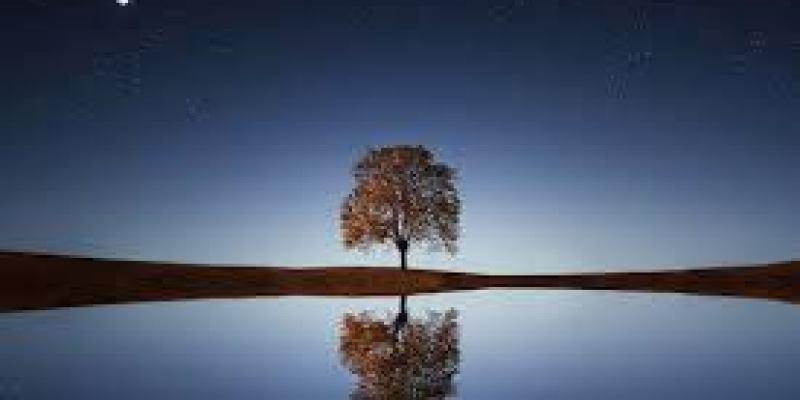 стоимость карата бриллианта, масса