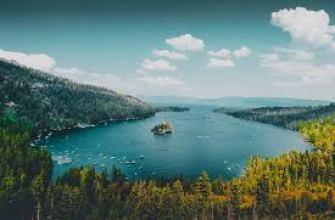 как вырастить редис в квартире, на подоконнике