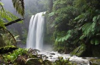 брак миф, идеальный, пара, семья