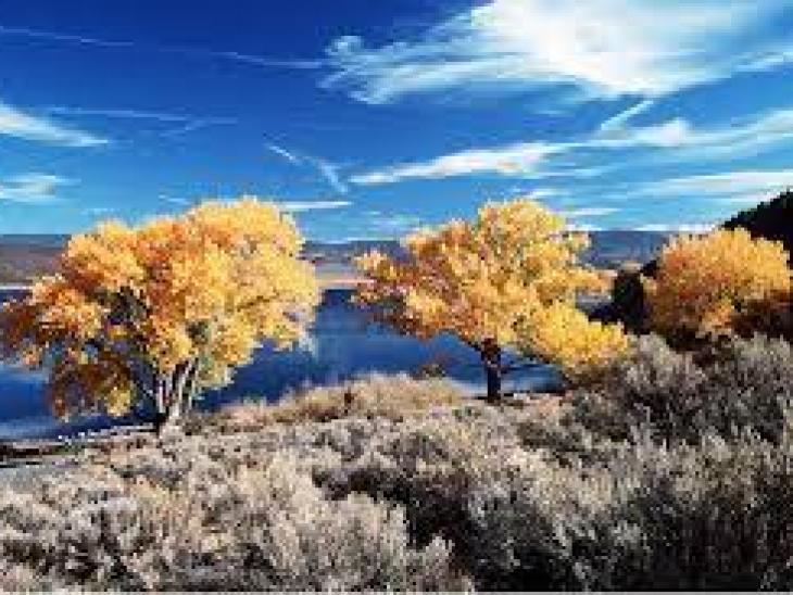 оттенки бриллиантов