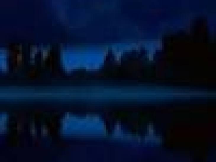 Кедровые орехи: польза или вред, разбираемся