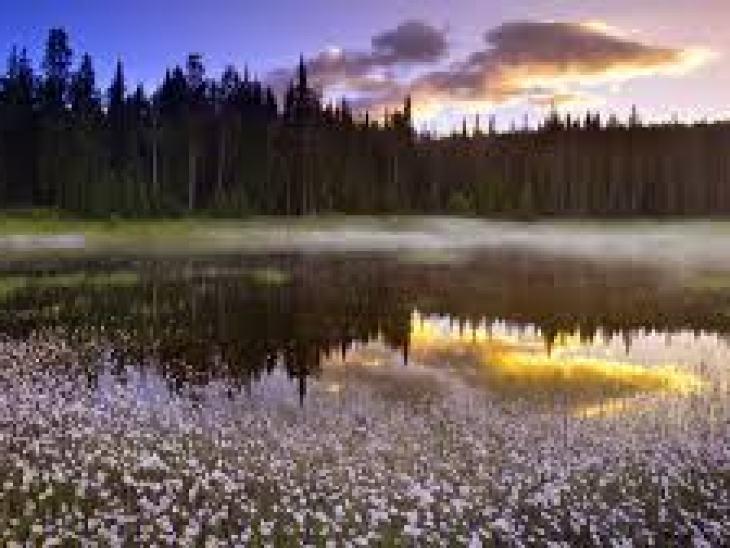 отдых в сша, туризм, места отдыха, пляж, лето