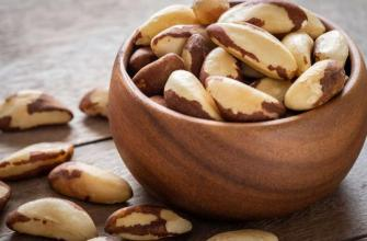 бразильский орех для женщин, польза, вред, для организма