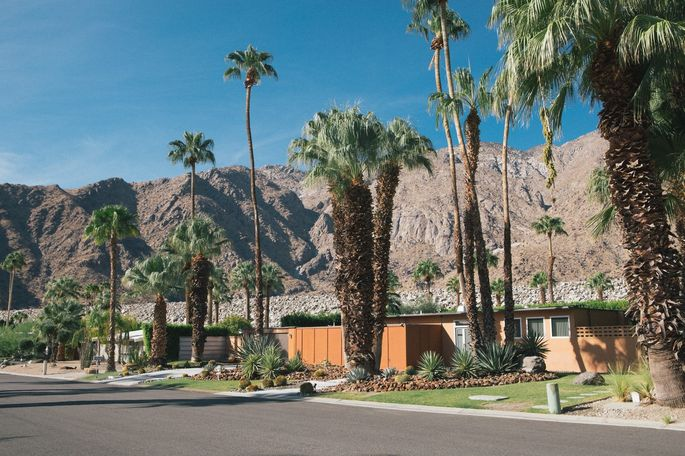 Celebrities who lived in the Vista Las Palmas neighborhood included Elvis Presley, Marilyn Monroe, Dean Martin, and Dinah Shore.
