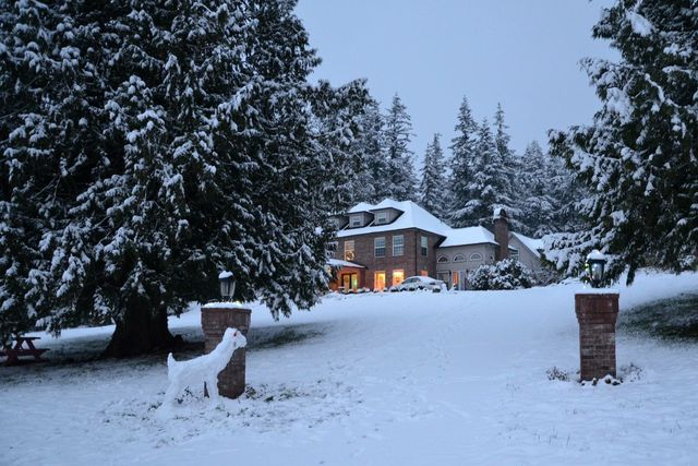 Fixer home in snowfall