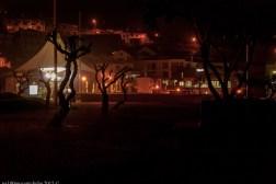 2016-02-08-13-Madeira-DSC_1701