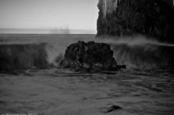 2016-02-08-13-Madeira-DSC_1998