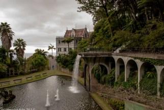 2016-02-08-13-Madeira-DSC_2197