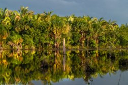 brasil-mato-grosso-cuiaba-lagoa-das-araras-dsc_9121