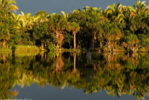 brasil-mato-grosso-cuiaba-lagoa-das-araras-dsc_9145