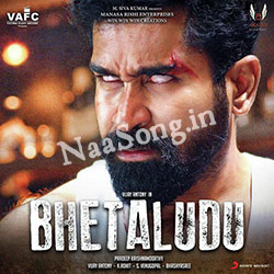 Bhetaludu Audio Cover