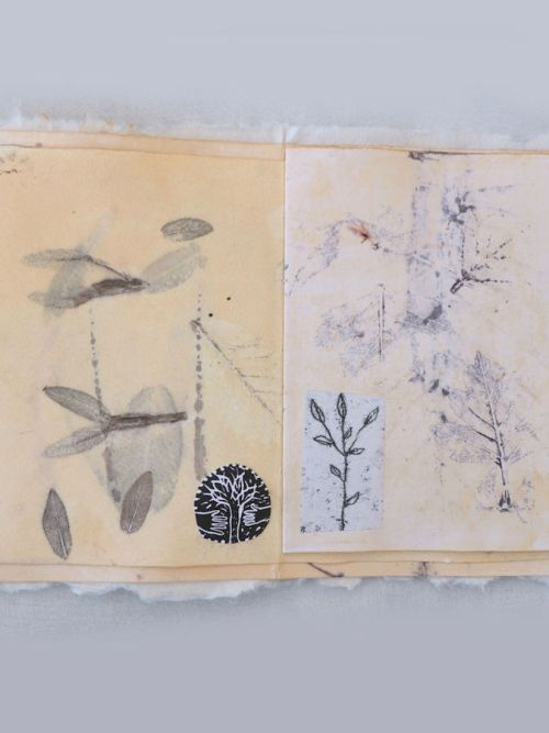 Livres d'artistes / Leporello