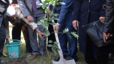 Photo of محافظ بورسعيد يبحث مع سفير بنما دعم العلاقات الثنائية بين البلدين