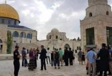 Photo of 102 مستوطن إسرائيلي يقتحمون المسجد الأقصى