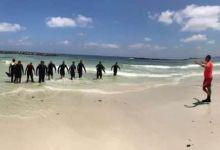 Photo of العثور على جثمان فاقدة الملامح والغطاس المتطوع جثة شادى المفقودة 90% بشاطئ النخيل