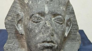 Photo of رأس الملك سنوسرت الثالث قطعة الشهر بالمتحف المصري، احتفالا بعيد الشرطة