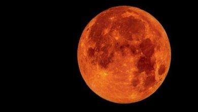 Photo of المريخ يزين السماء في يناير ويشاهد بالعين المجردة