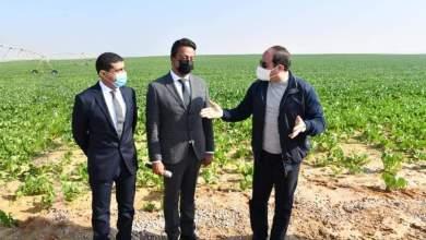 Photo of استصلاح نصف مليون فدان.. السيسي يتفقد مشروع مستقبل مصر للإنتاج الزراعي