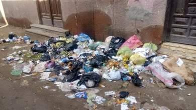 """Photo of القمامة تفترش شوارع """"شيبة قش"""" الشرقية"""