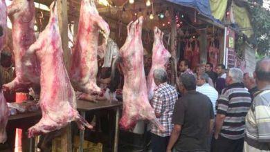 Photo of أسعار اللحوم في الأسواق المحلية