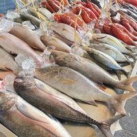 Photo of الأسماك تسجل إستقرارا في الأسعار اليوم