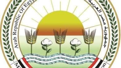 Photo of وزير الزراعة يكلف كافة أجهزة الوزارة بمتابعه أثار التقلبات المناخية بالمحافظة