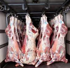 "Photo of ""التموين"" تضبط نحو 17 طن لحوم وأسماك وأغذية فاسدة قبل ترويجها بالأسواق"
