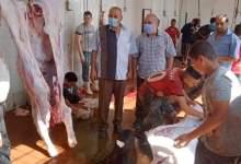 Photo of بالصور.. مجازر القليوبية تستقبل المواطنين مجانا والمحافظ يطالب المواطنين بالألتزام بالذبح داخل المجازر